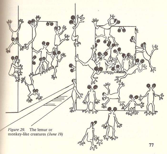 andreasson affair lemurs
