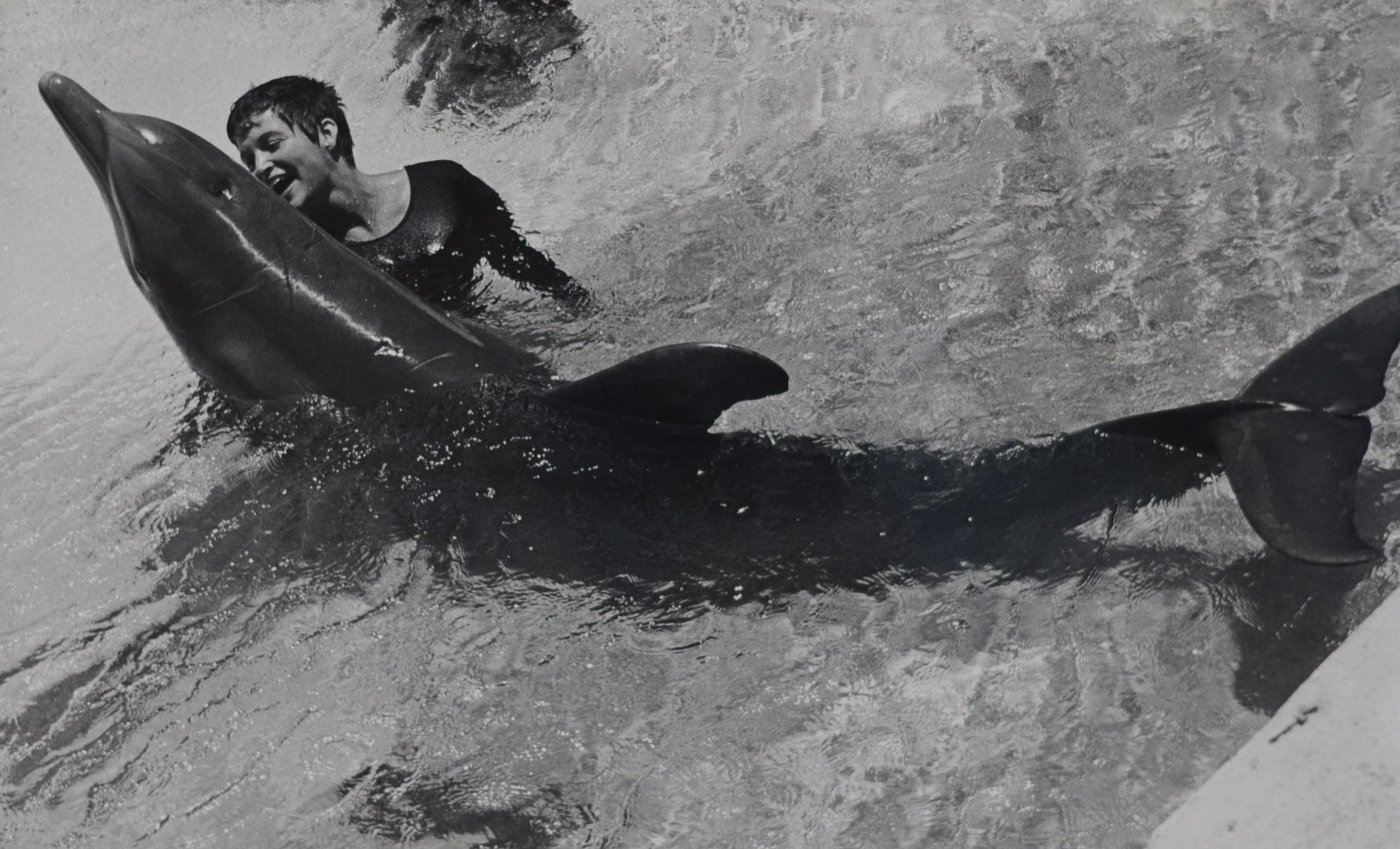 margaret howe dolphins john c lilly